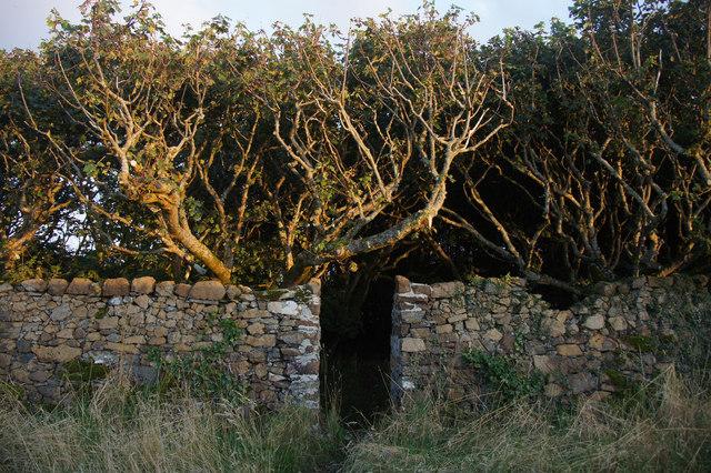 Gate to the graveyard at Halligarth, Baltasound