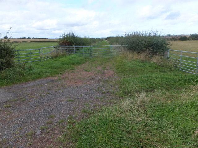 Farm track, Thornton