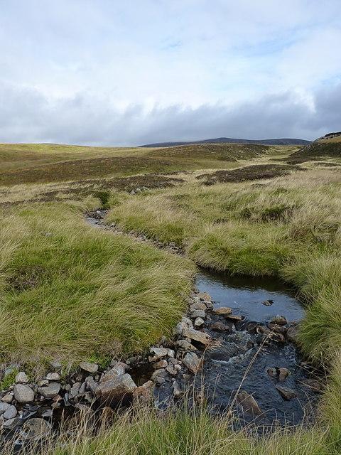 A tributary of the Caochanan Ruadha