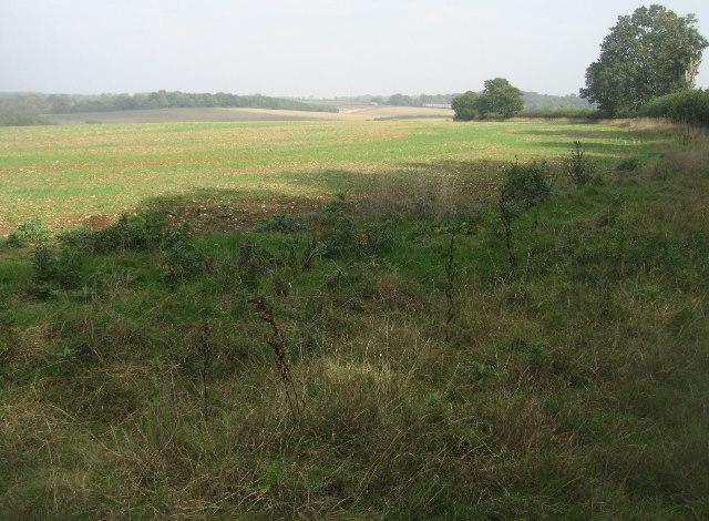 Fields on Summer Down