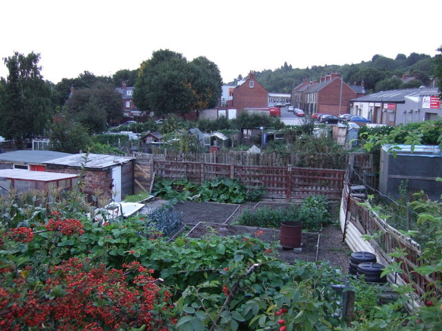 Allotments, Barnsley