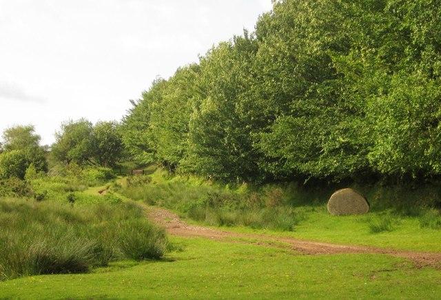 Edge of Exmoor at Badlake Moor Cross