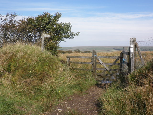 Gate and footpath, on Bray Common