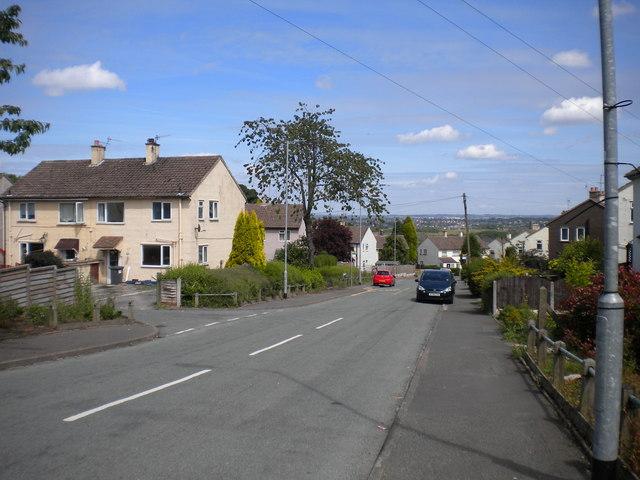 Buxton Avenue, Park Site