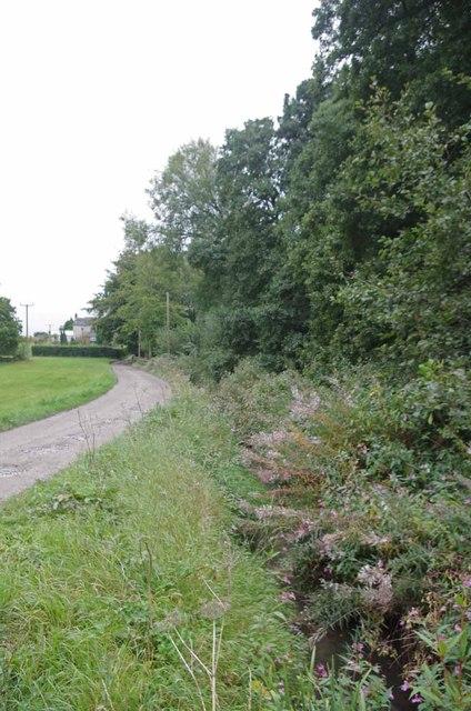 Towards Springwood Farm
