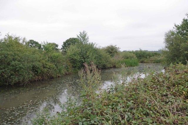 Small Pond near Springwood Farm