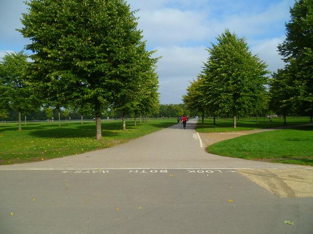 Orange Way after Wiltshire (645)