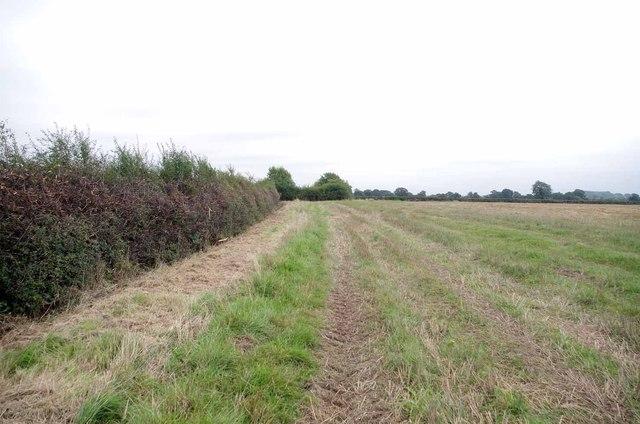 Footpath to Mountplesant Farm