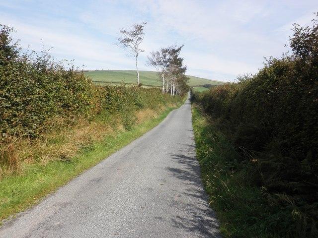 Minor road on Fullaford Down