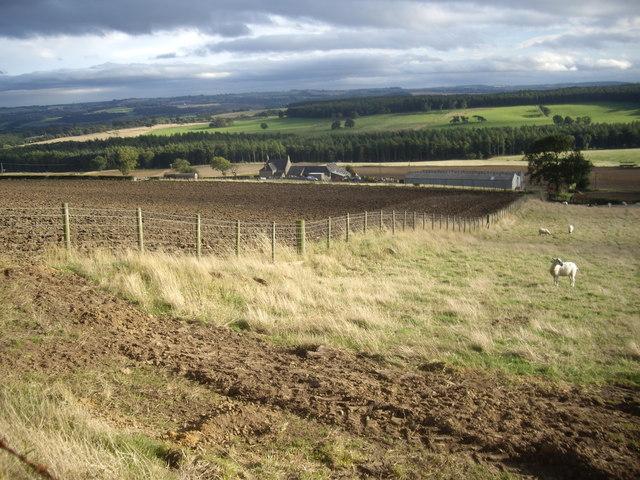 Brawn's Den farmstead