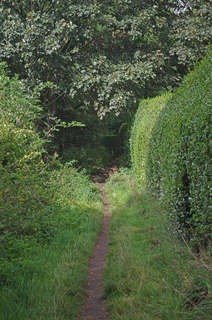 Footpath to Leycester Rd