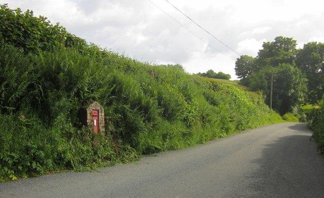 Lane at West Anstey