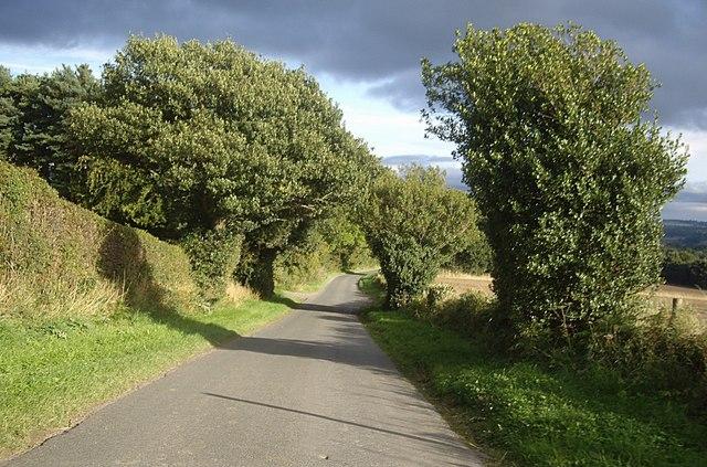 Downhill Wolsingham Road