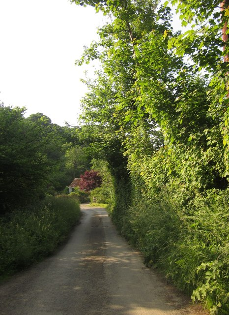 Lane at Snailey Park