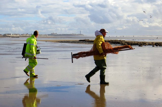 Shrimpers on Rossall Beach