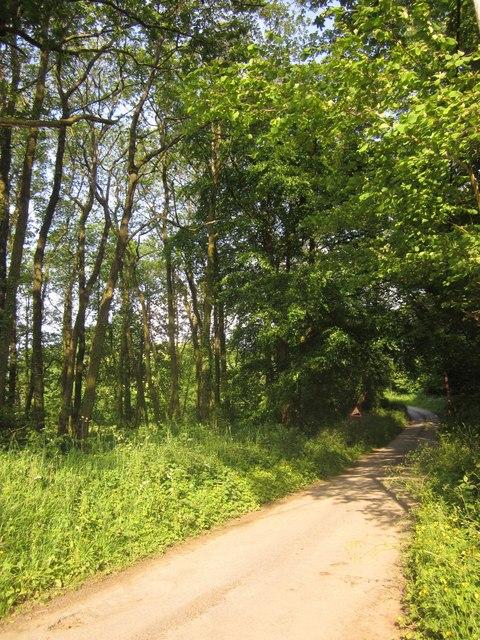 Lane near Dunsley Farm