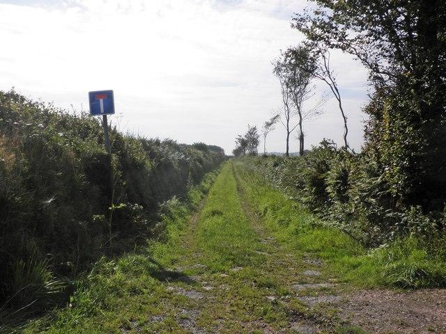 Green Lane on Fullaford Down