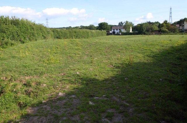 Field at Yeo Mill