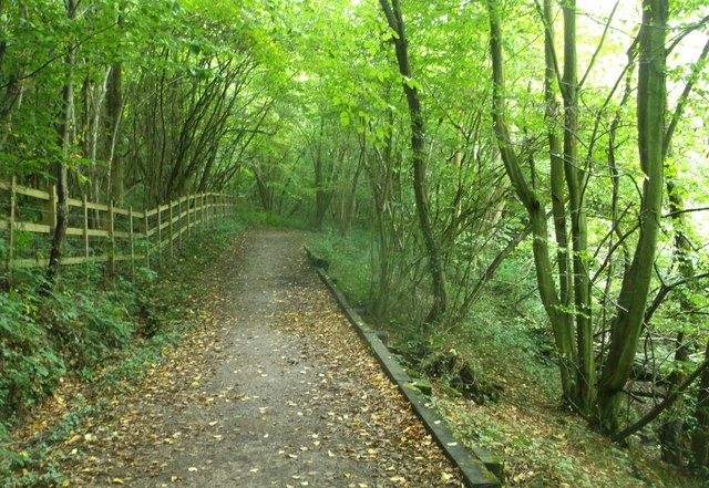 Round reservoir Route in Long Wood