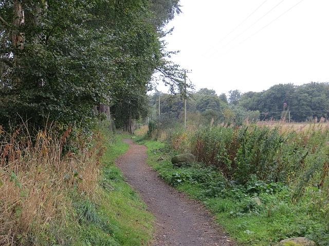 Springfield - Stratheden Path