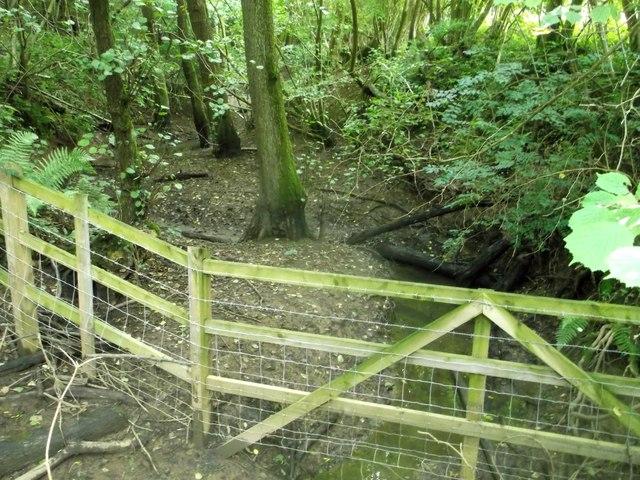 Long Wood stream
