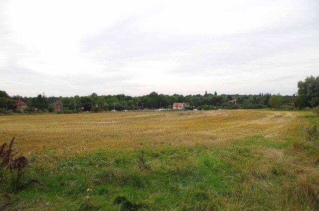 Fields Towards London Rd