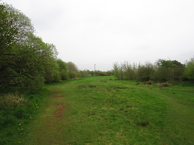 Bowden Common