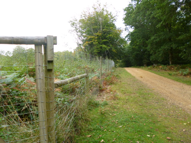 Burley Outer Rails Inclosure, deer-proof fencing
