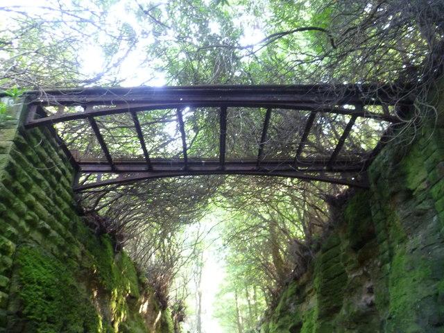 Iron footbridge relic