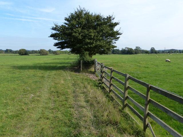 Farmland east of Welford Road