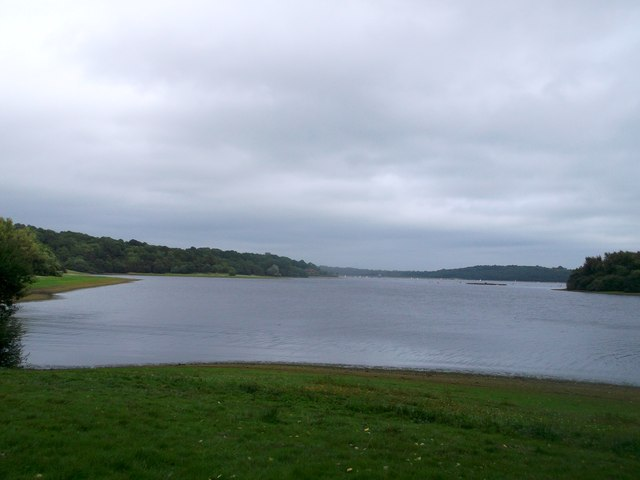 Bewl Water Reservoir beside Great Hook Wood
