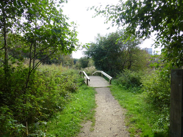 Footbridge in Anderton Nature Park