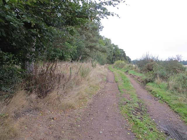 Farm road, Annsmuir