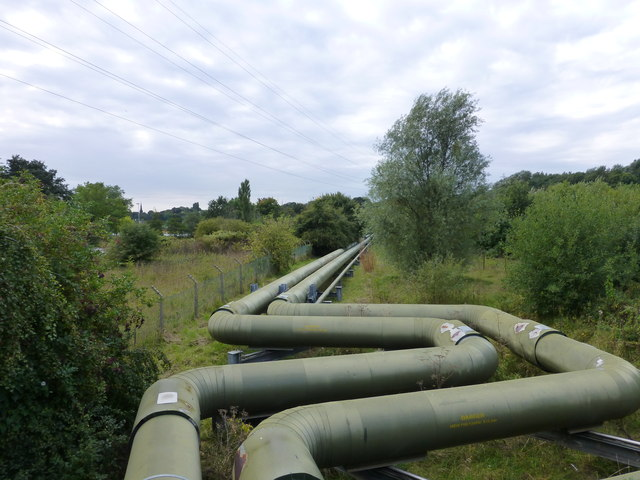 Steam pipeline in Carey Park