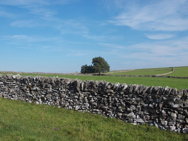 Limestone uplands - High Field