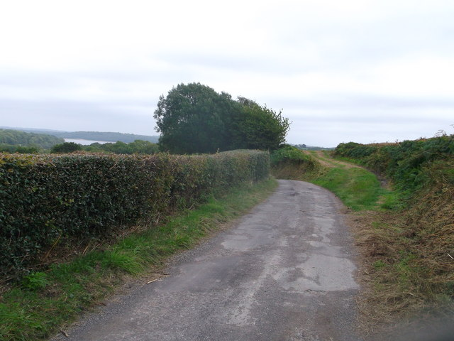 Track junction on Butts Lane