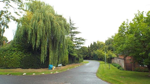 Ormonde Road, Moor Park