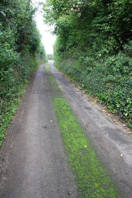 View along Green Lane towards the A30