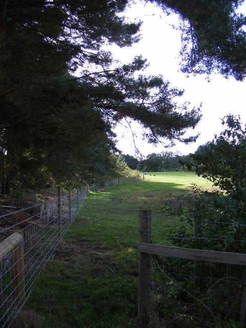 Footpath to Haveringland Road