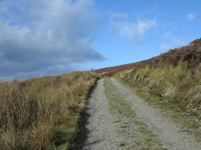 Estate road rising near high point of Pen y Cerrig Duon