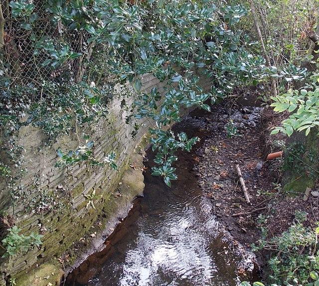 Gors-fawr Brook between Waunarlwydd and Gowerton