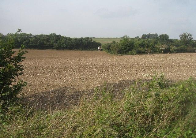 Spot the farm machinery
