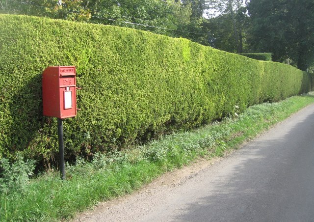 Rural post box - Ashe Warren