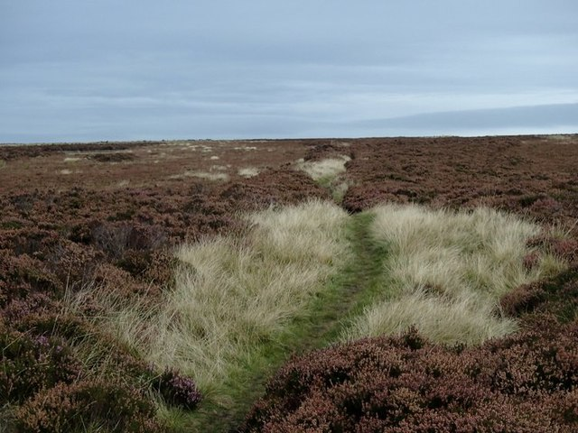 Moorland path west of Flask Edge