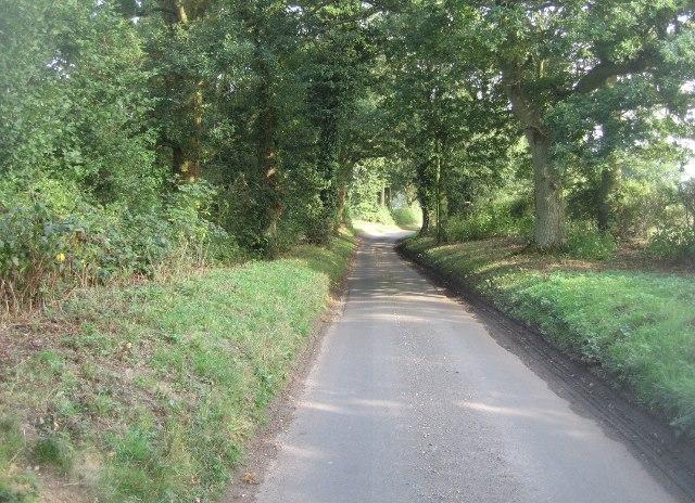 Harrow Way near Clarken Green