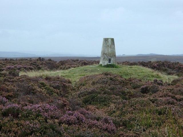 Trig point on Totley Moor