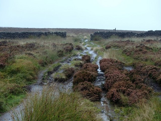 Moorland footpath and wall, White Edge