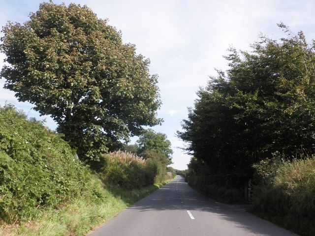 North Lane, Challacombe