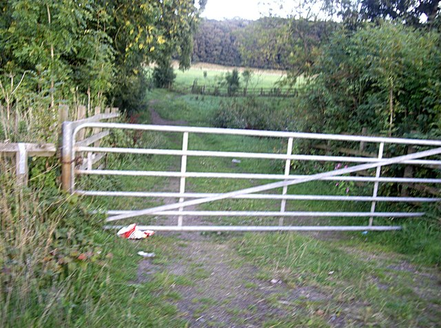 Field access gate