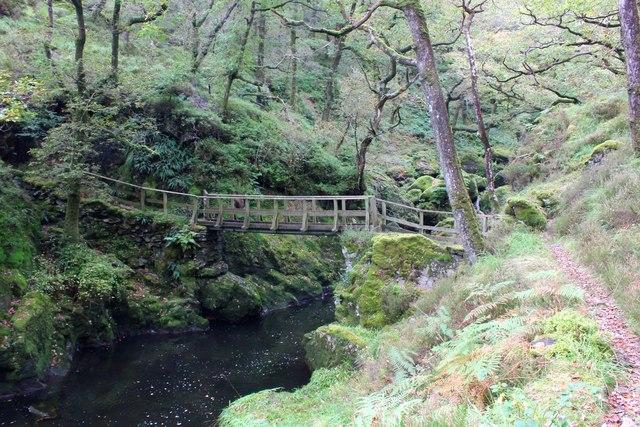 Footbridge over the Afon Goedol